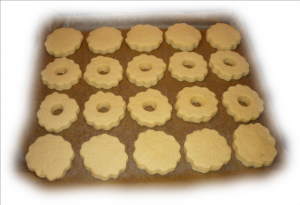 linzer-020--medium---small-.png